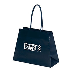 Customized Everest Paper Bag