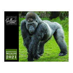 Customized Magnus Calendars - International Wildlife