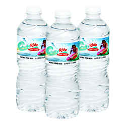 Customized Bottled Water with Twist Cap - 16.9 oz