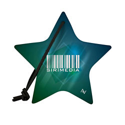 Customized Recycled Full Color Felt Star Ornament