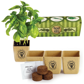 Customized Eco-Planter 3 Pack
