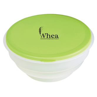 Customized Collapsible Big Lunch Bowl