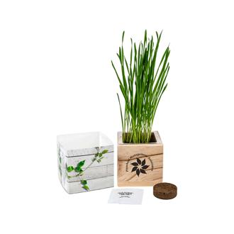 Customized Wooden Cube Grow Kit