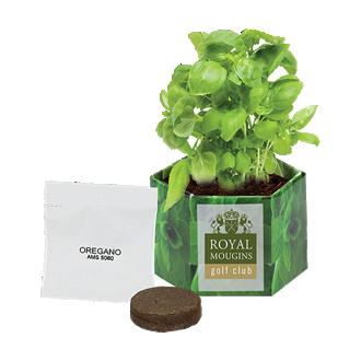 Customized Pop Up Growing Starter Kit