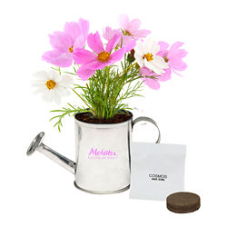 Customized Watering Can Planter Kit