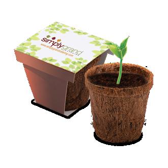 Customized CoCo Planter Kit