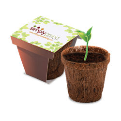 Customized CoCo Planter Kit