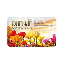 Customized BIC® 20 Mil Jumbo Full Color Business Card Magnet