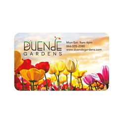 Customized BIC® 20 Mil Jumbo Full Colour Business Card Magnet